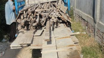 Der mit Holz beladene LKW