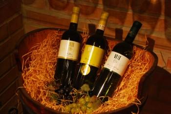Weinverkostung | Zwerndorf